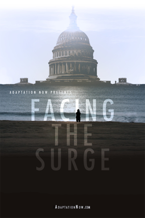 FACING THE SURGE