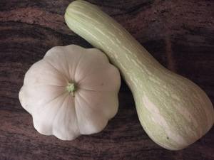 Homegrown Squash