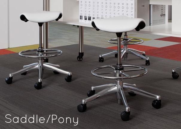 Saddle/Pony Series