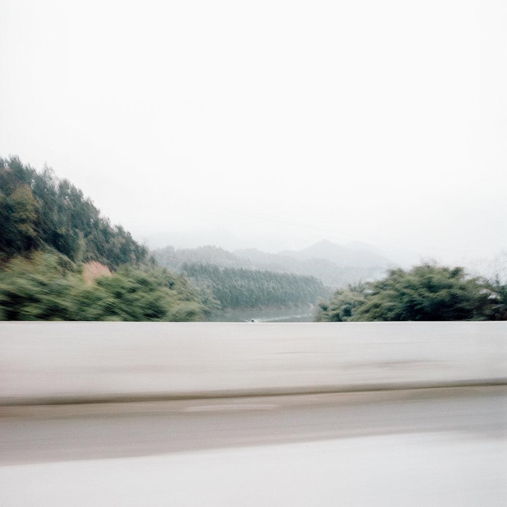 jungblut_bamboo_27.jpg