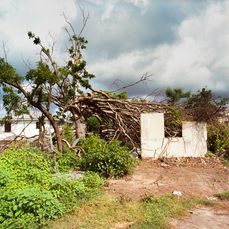 barbuda07.jpg