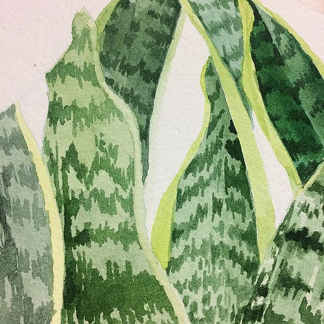 Introduction to Watercolor Plants, Taught by Roan Victor, Saturday, Dec. 15 (1:30 PM to 3:30 PM) -