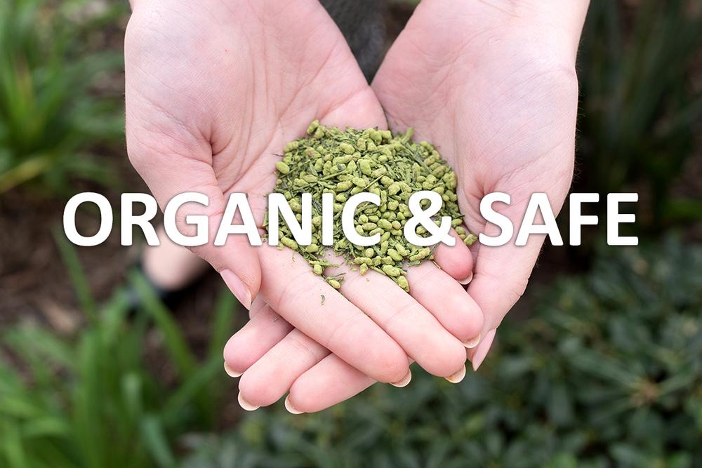 Start Pure Organic.jpg