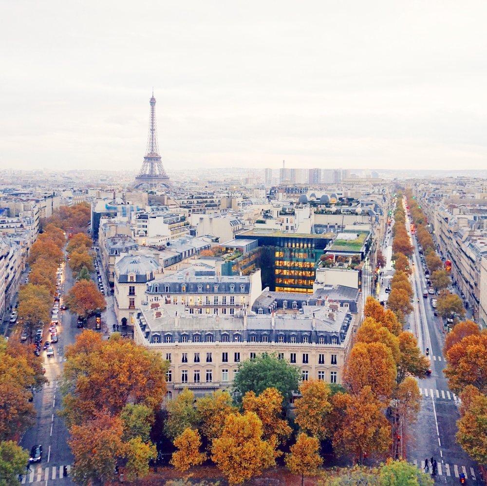 Paris in the fall 0.jpeg