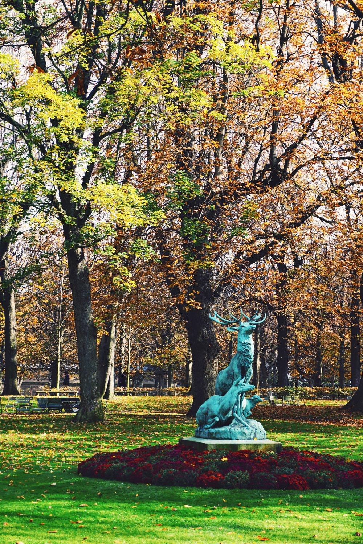 Paris in the fall 7.2.jpeg