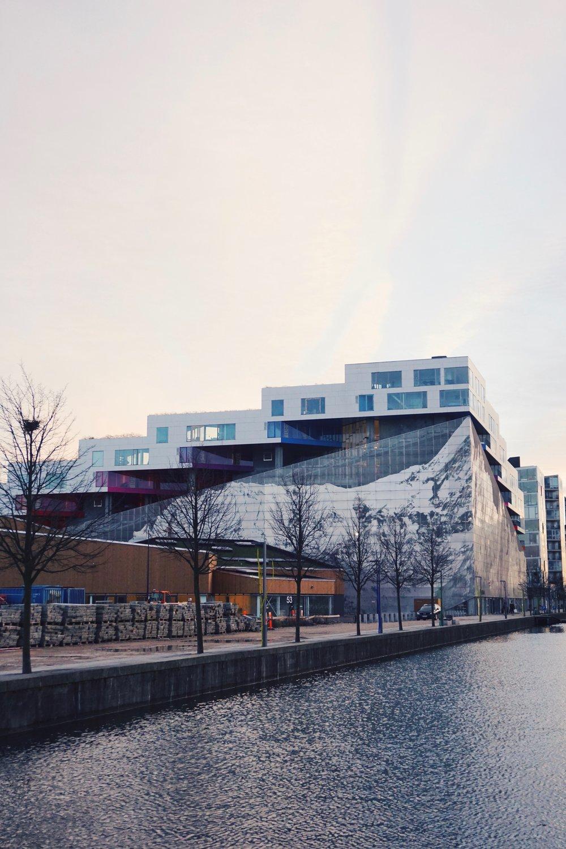 Copenhagen 17.1.1 (1).jpg