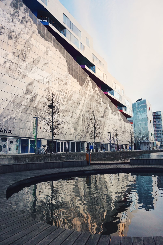 Copenhagen 17.1.2.jpg