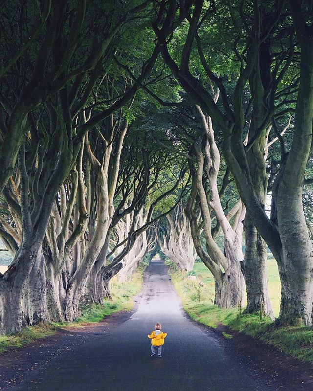 The tiniest traveler running down the Kingsroad. #gameofthrones #whpmini