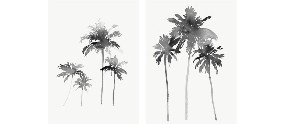 palms2A.jpg