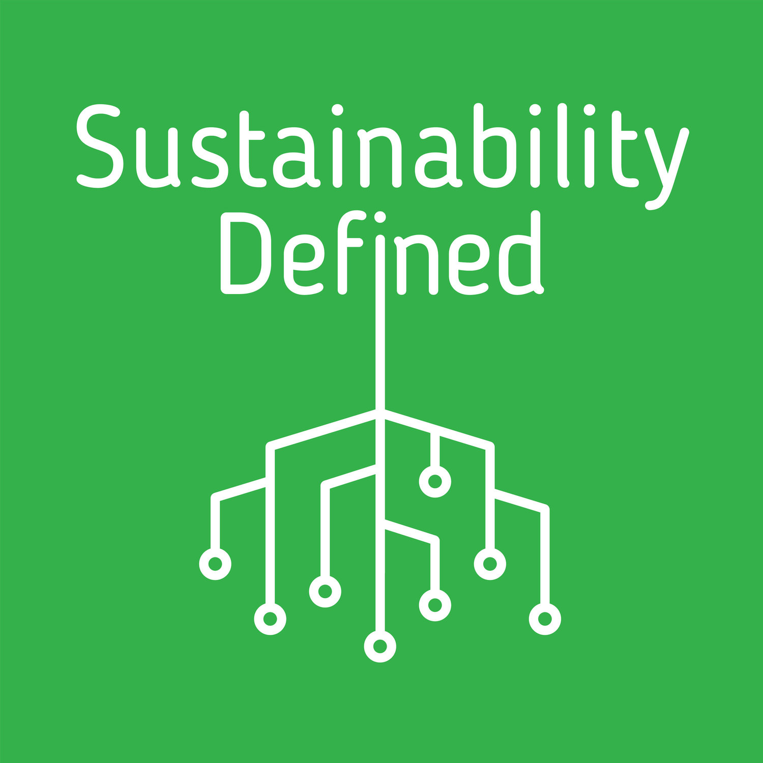 Sustainability Defined