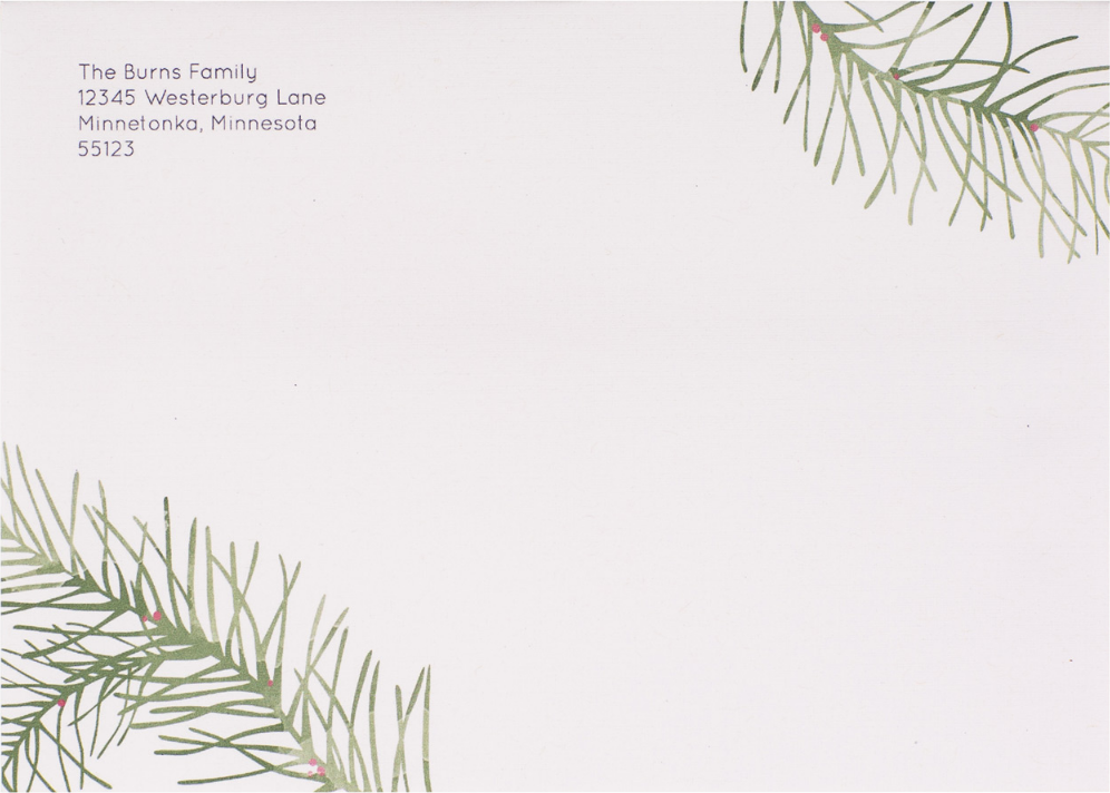 'Painted Pines' on White Envelope