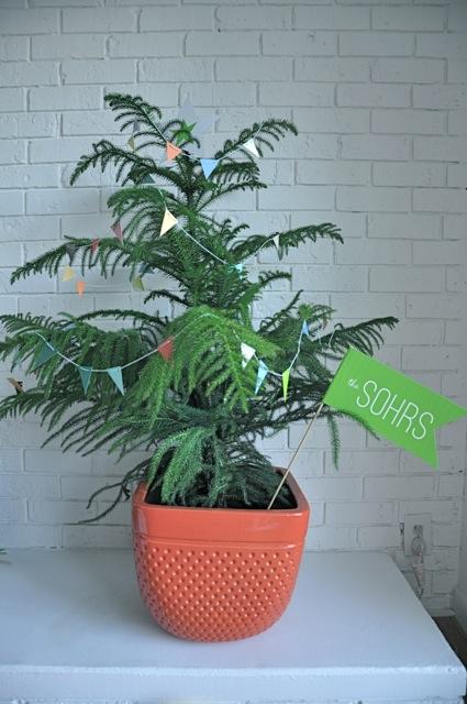 treeforsohrs2_spp.jpg