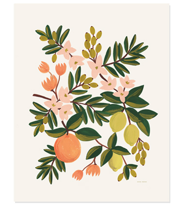 ap_Citrus-floral_m.jpg
