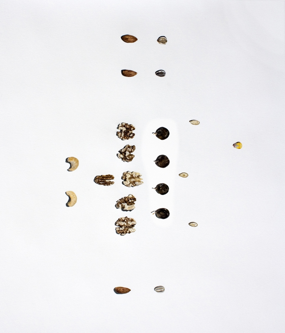 Nuts vs. Seeds (football formation)