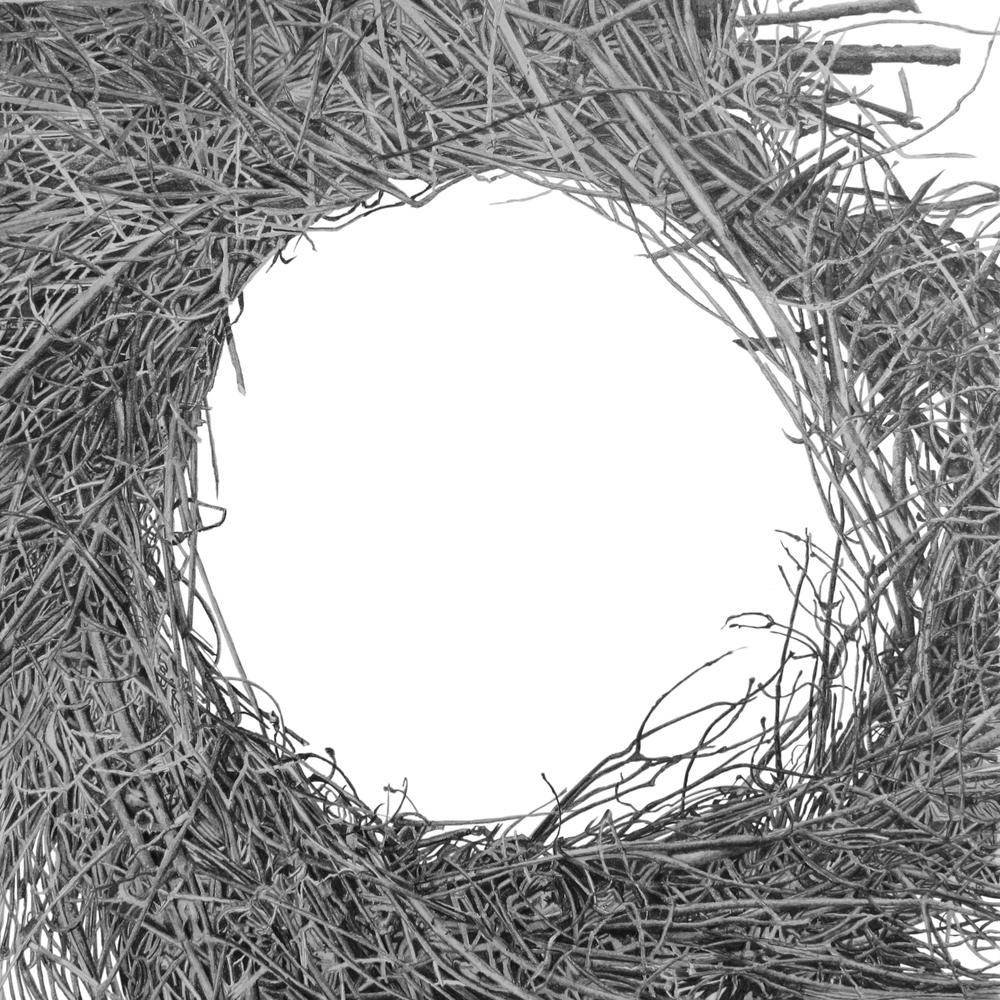 Sticks Enclosed Circle