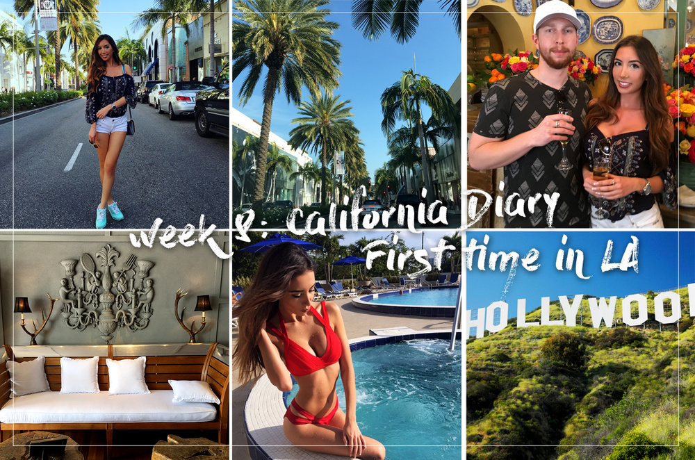 My California diary. A trip of Ulia Ali to Los Angeles