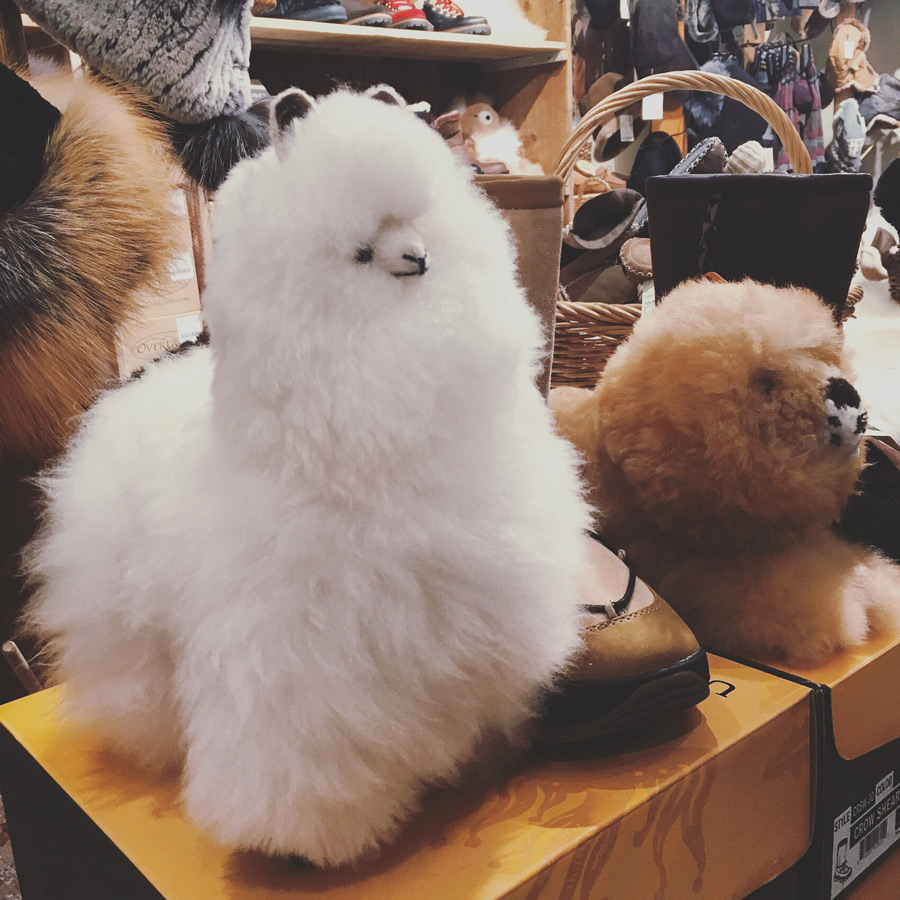 The cutest soft toys made from alpaca fur.