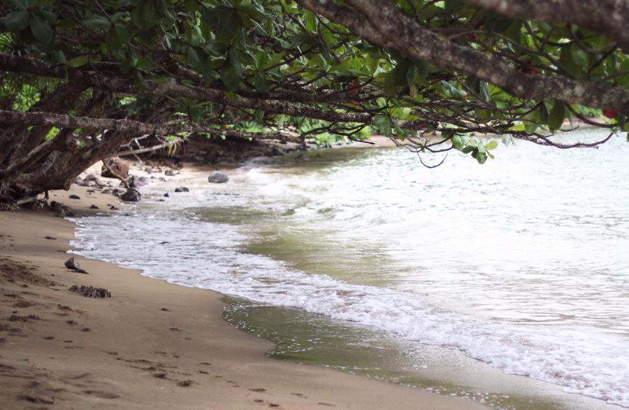 Beach in Hanalei, Kauai island, HI