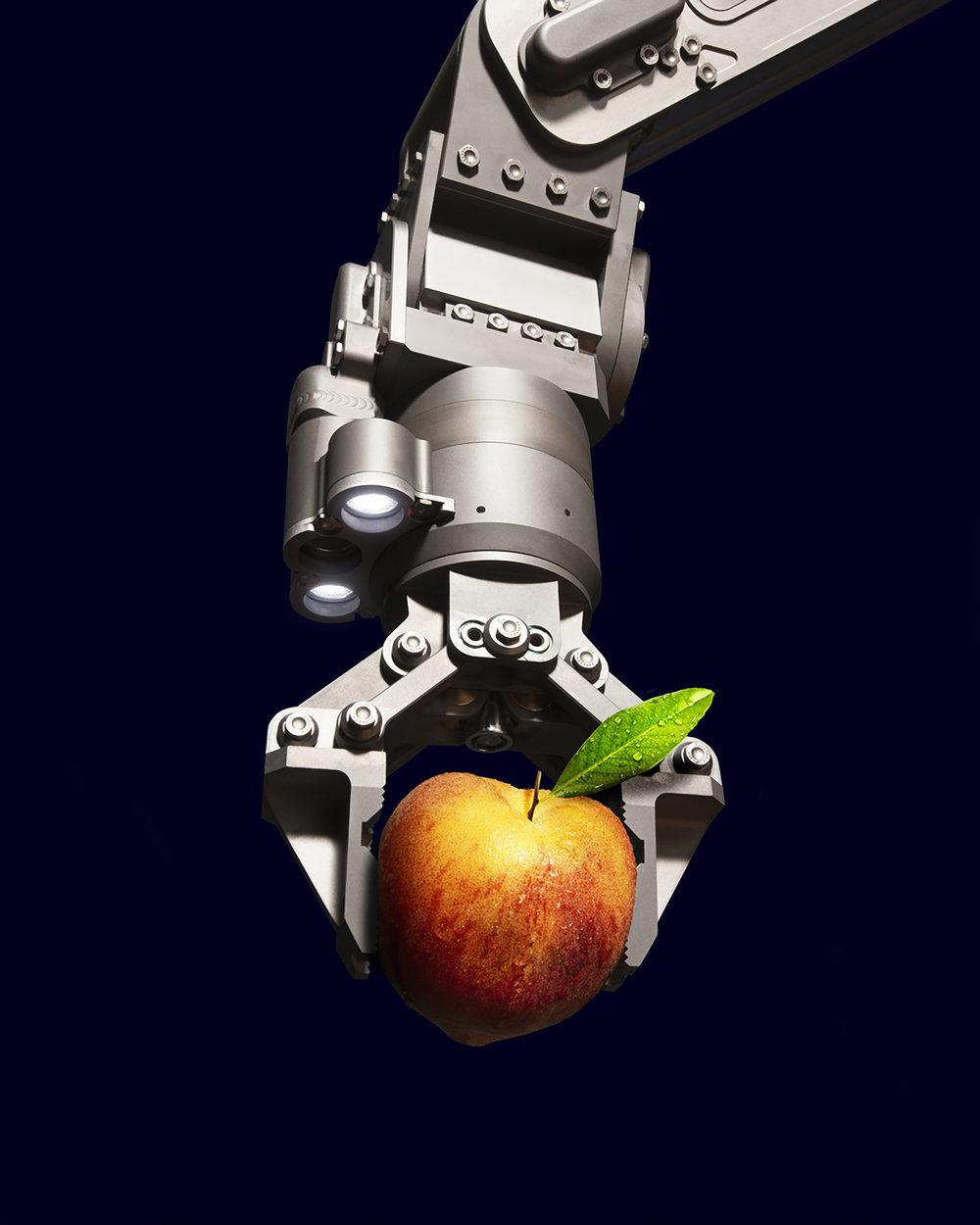 Schilling Robotics TITAN 4 holding a peach