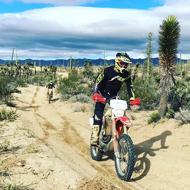 Perfect dirt in Baja today.