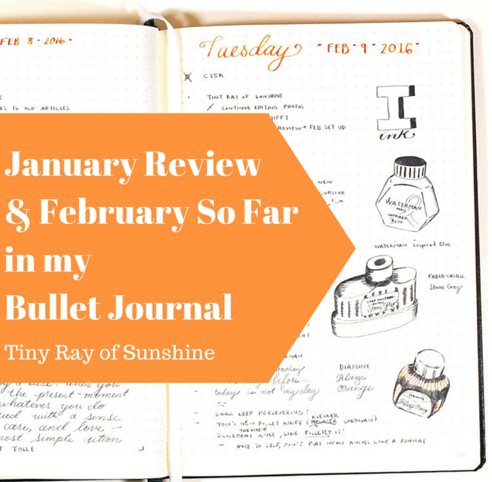 january review & february so far in my bullet journal