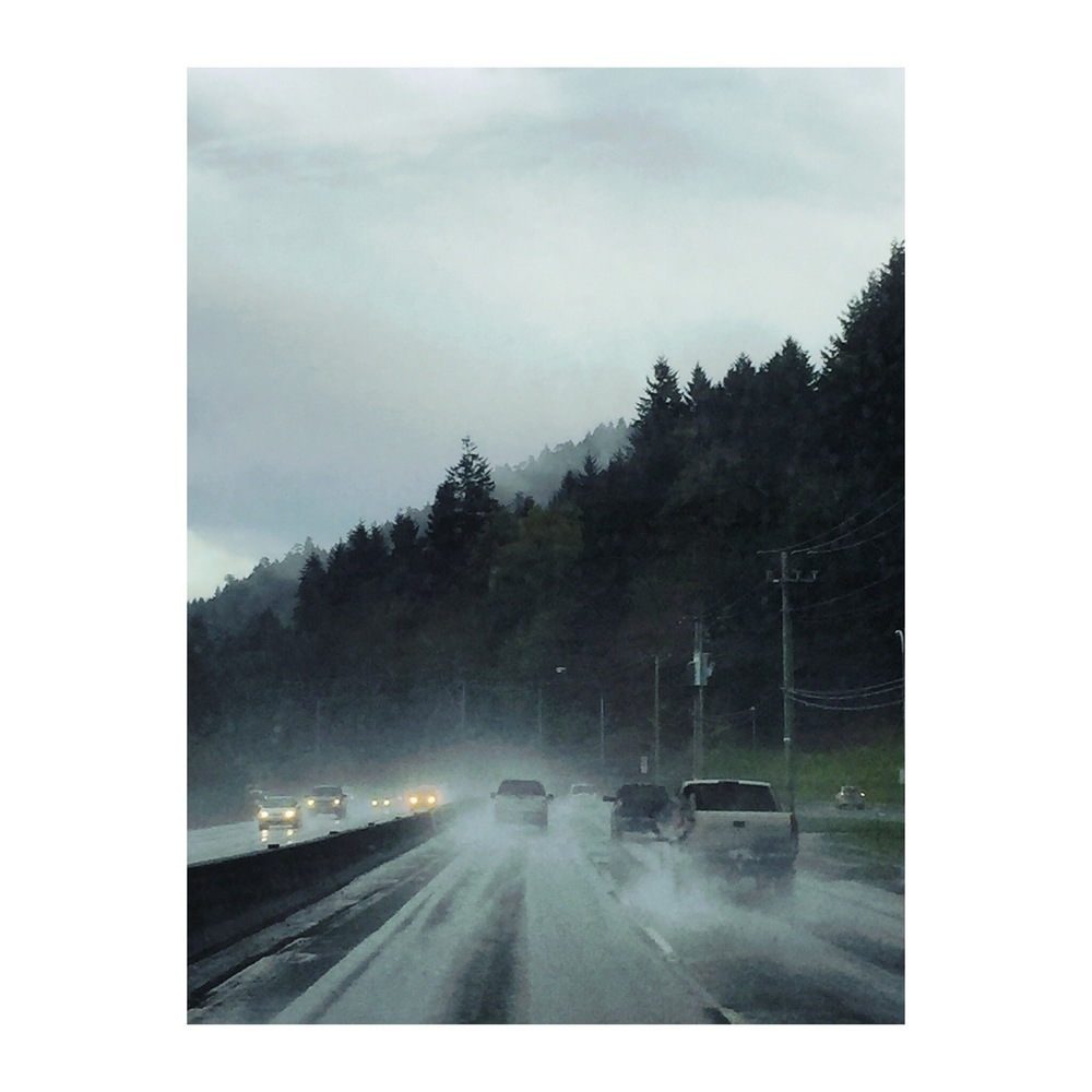 Driving through the rain on Vancouver Island.