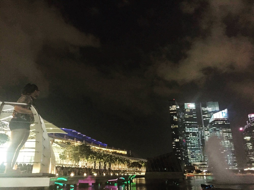 A really magical moment captured candidly by my friend Kat in Singapore, at the end of the Friday night light show.