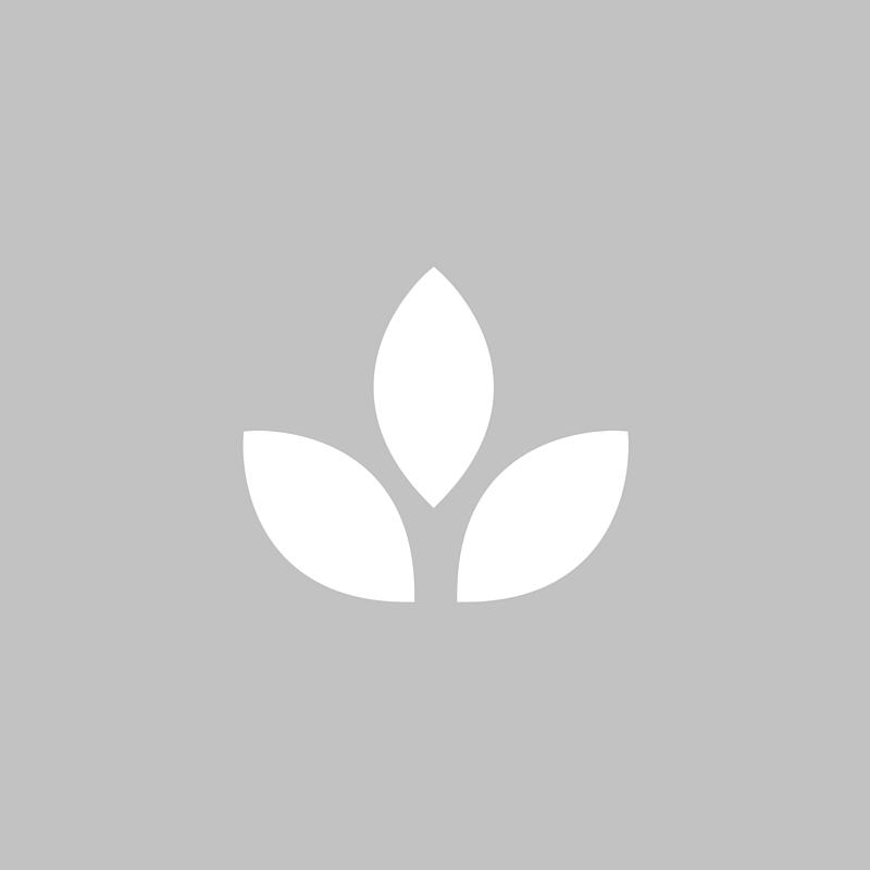 Copy of sustainable.jpg