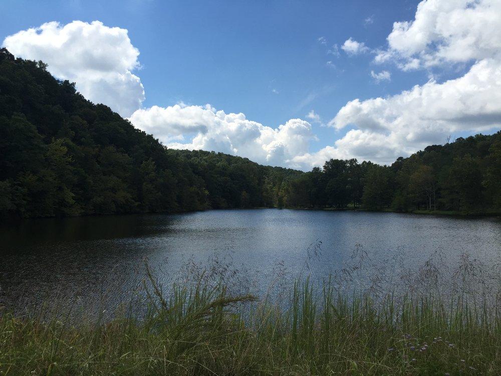 the lake .JPG