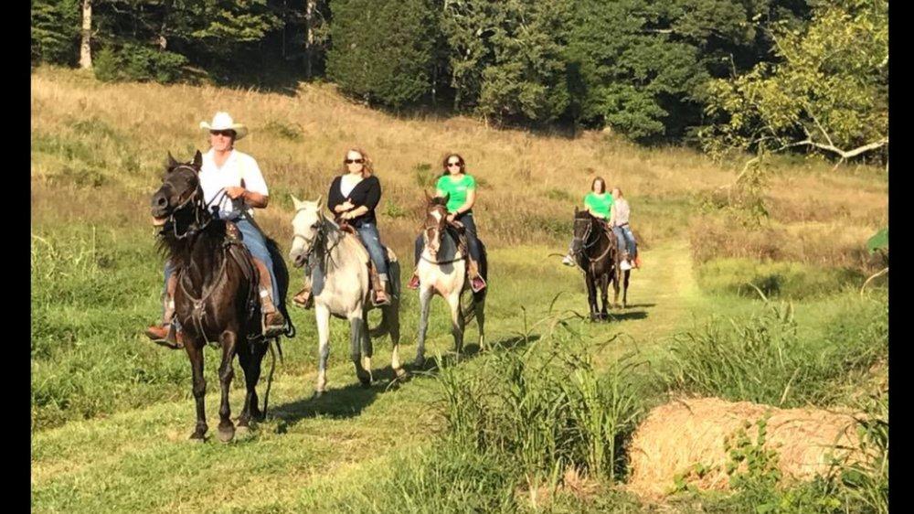 Horses down Peach Orchard Hollow.jpg