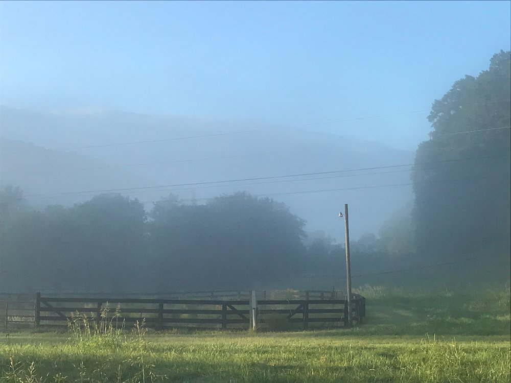 McP Mist over circle corral.JPG
