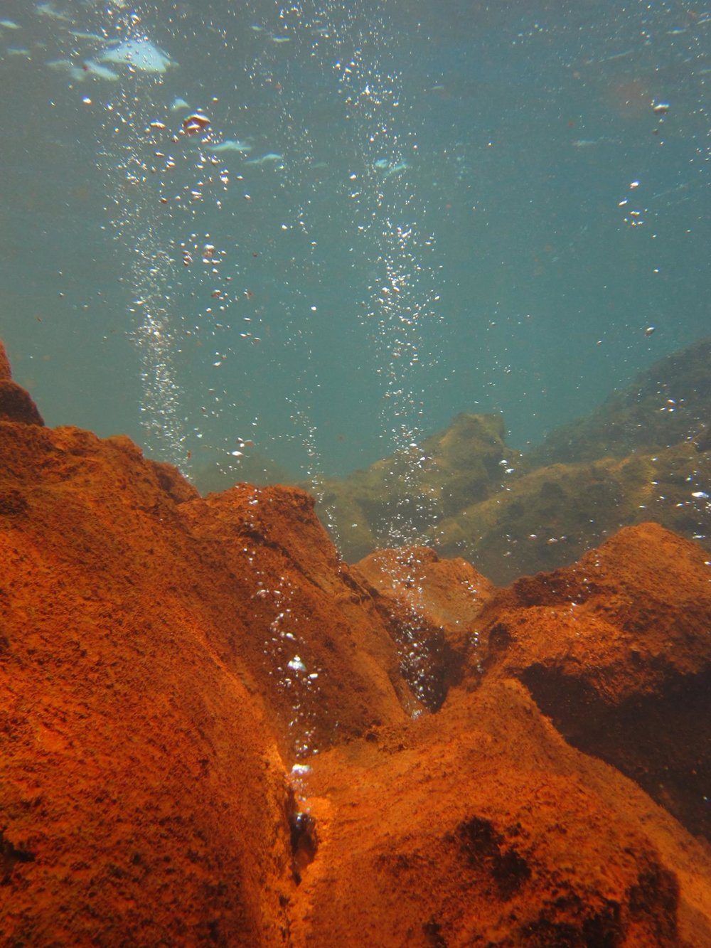 Indonesia - Surveyed the Bangka National Marine Park, Kurimunjawa National Park, and Sangihe Islands for a scientific expedition. Visited Mahangetang 'underwater volcano' (actually a CO2 seep, pictured).  Driectly where the CO2 gas was bubbling out was red and fuzzy like in the picture, but there were nice corals just off the seep which was surprising.