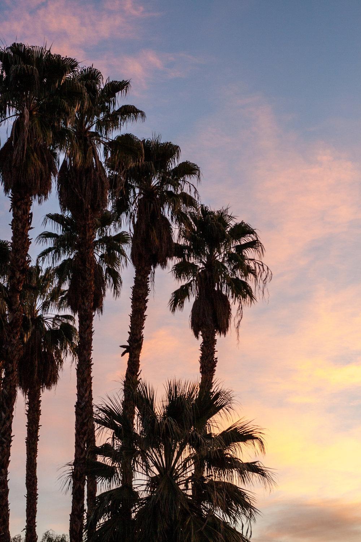 Sunrise-2355.jpg