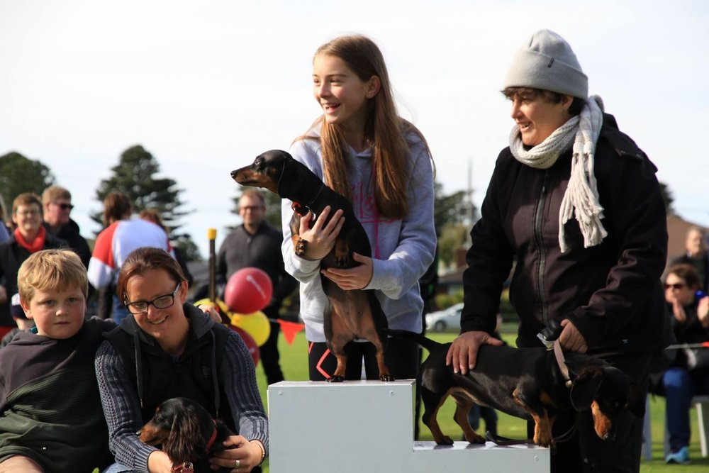 Daisy, the over 2's champion! Pictured here on the centre of the  podium with her owner, Jemma Chapple.