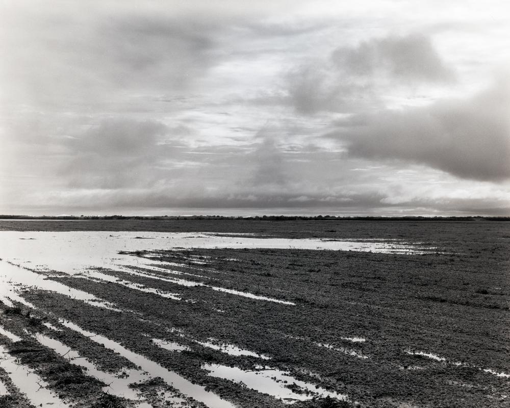 Flooded Redlands, 2015