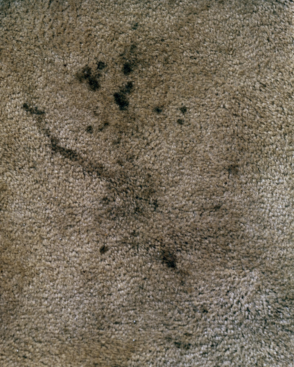 biege_carpet_black_stain.jpg