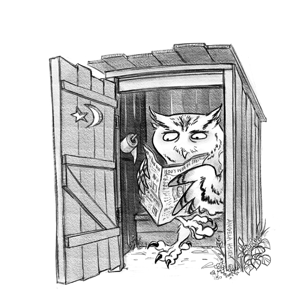 owl_in_outhouse_edit_resize.jpg