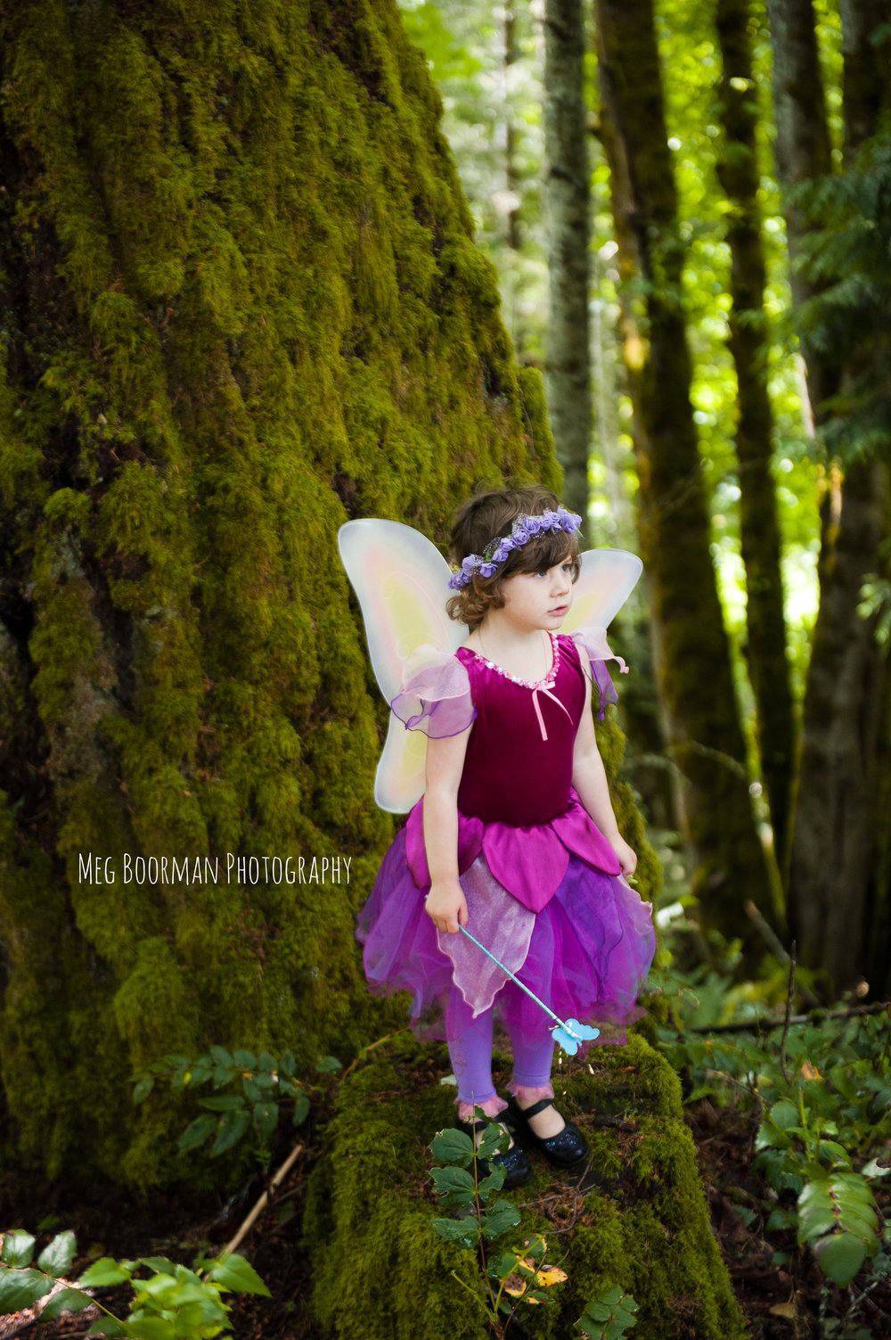 fairyevent-12.jpg