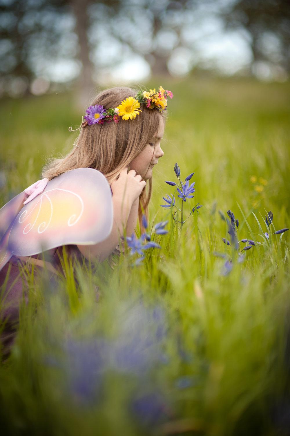 fairy3x2-2.jpg