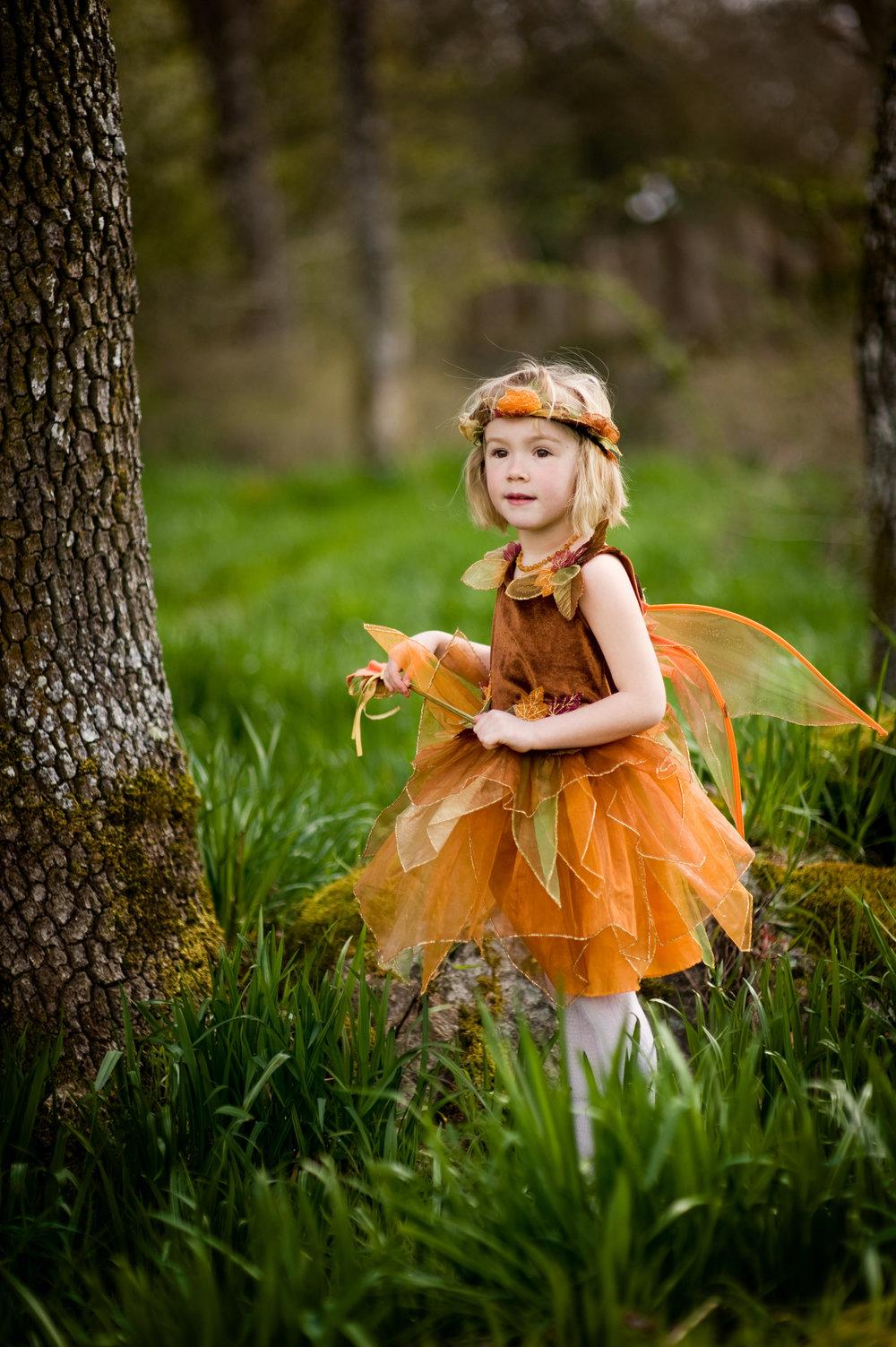 fairy4x6-6.jpg