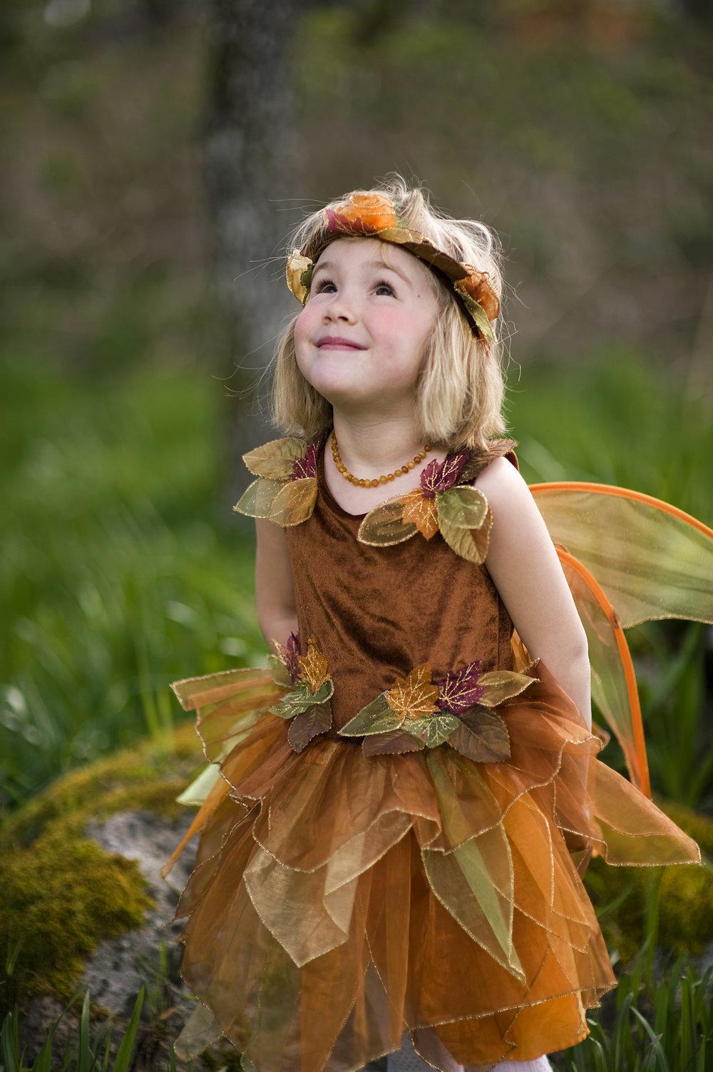 fairy4x6-2.jpg