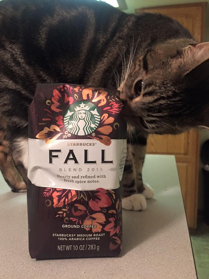 Roscoe Wants to Try Fall Blend Aug 2015