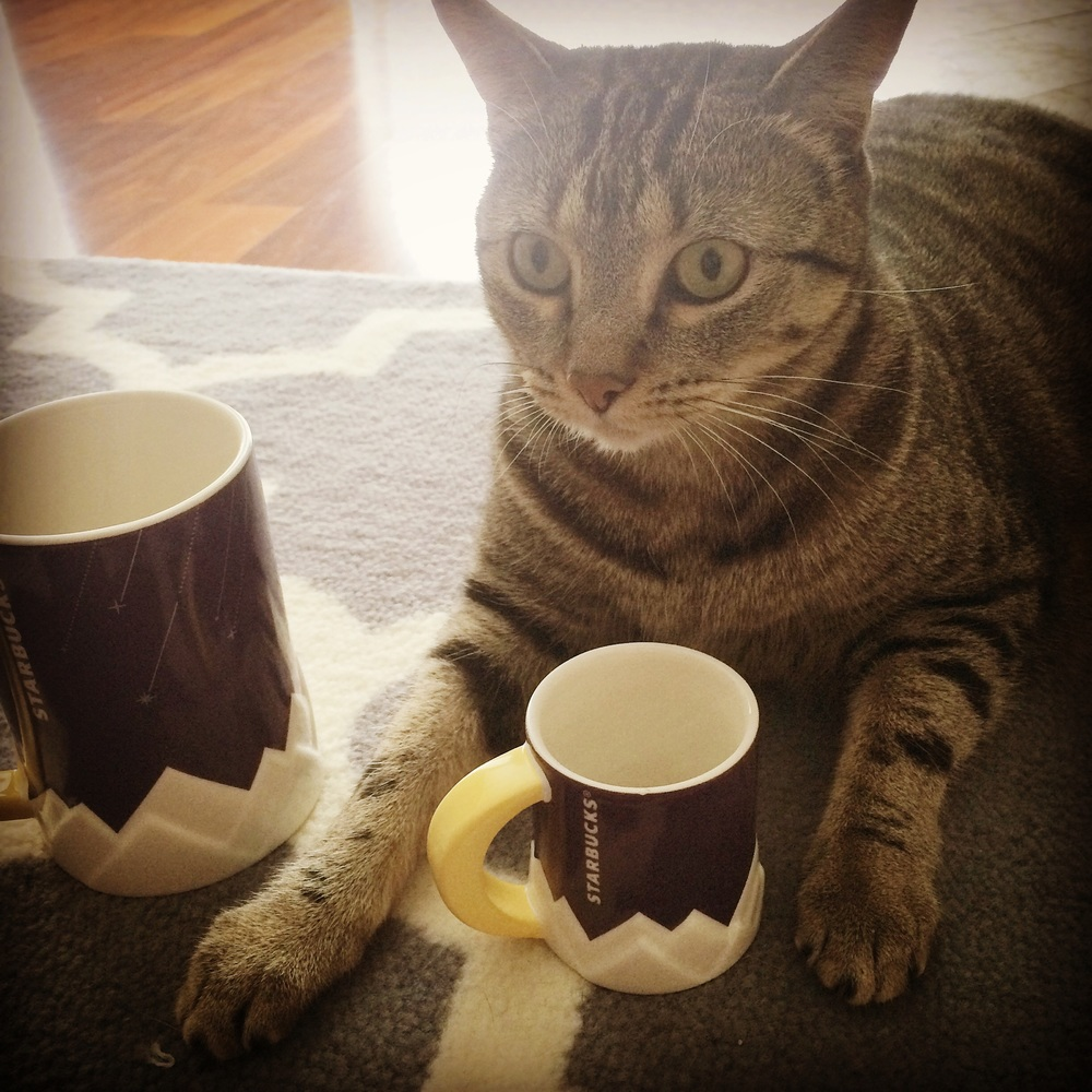 image-We-share-our-morning-coffee-in-the-same-cups.jpg