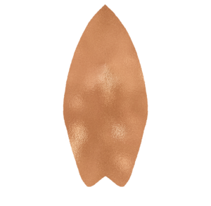 SURFBOARD-COPPER.png