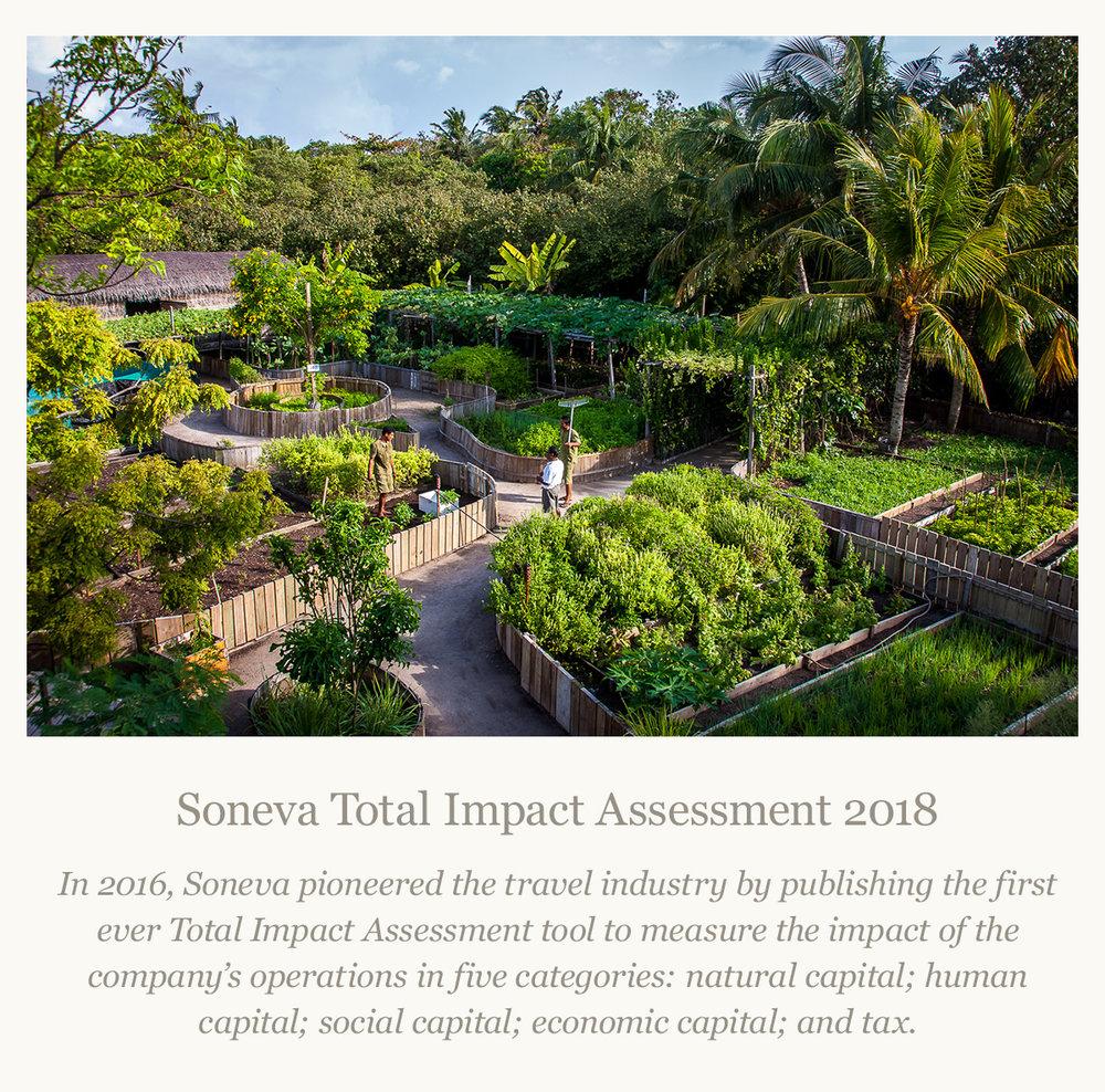 Impact Assessment.jpg