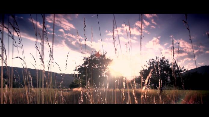FS100-film.png
