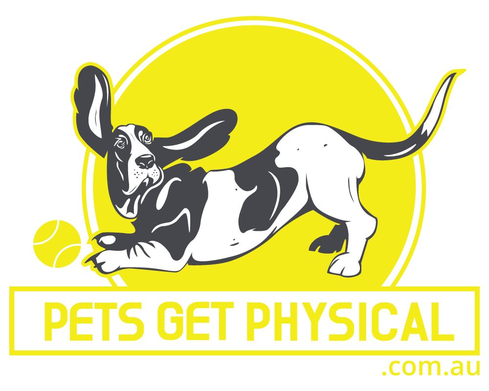 About — Pets Get Physical