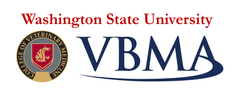 Business Certificate Program — WSU VBMA