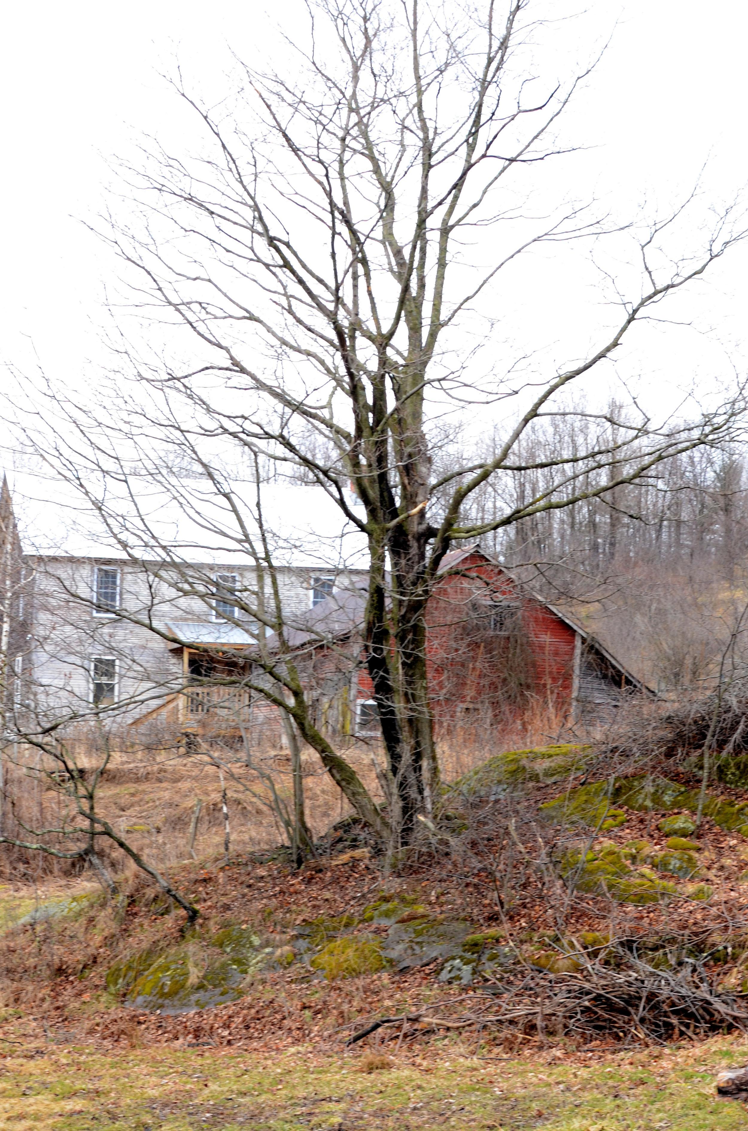 Rural Vermont - Rosalie