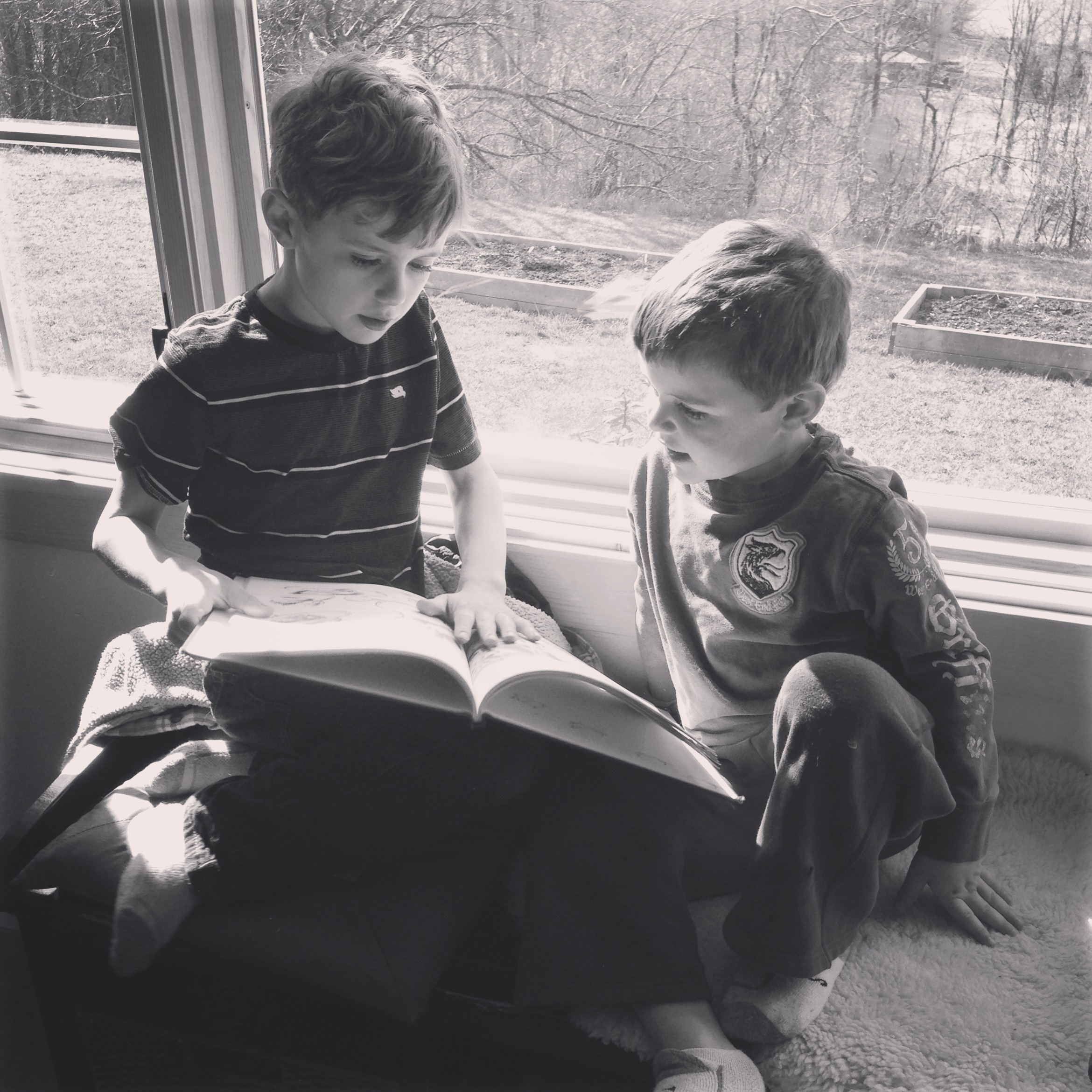 Brothers reading together - Christina Rosalie